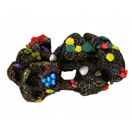 N1 Камень большой с цветными раковинами, 18х12х8,5 см