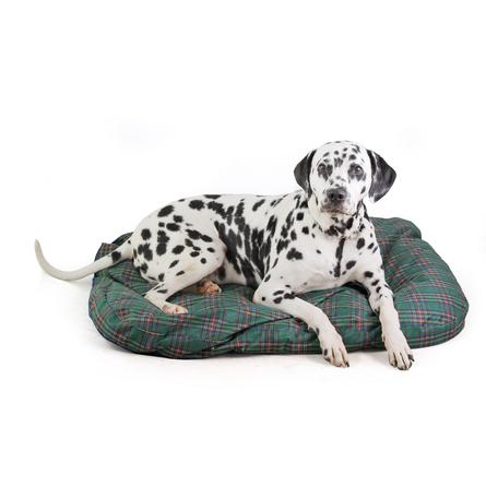 TiTBiT Матрас с наполнителем из лузги гречихи для собак, зелёный