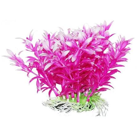 УЮТ Растение аквариумное Людвигия фиолетовая, 12 см