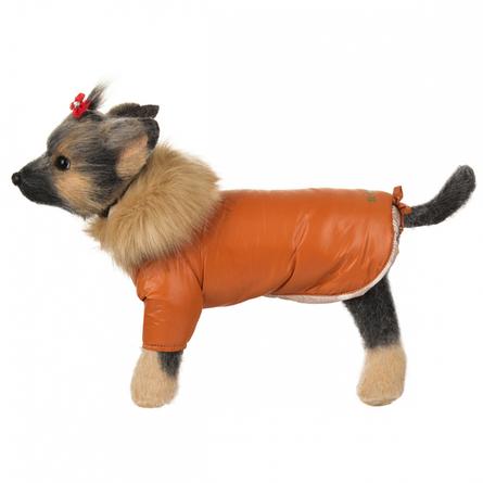 Купить DogModa Winter Куртка оранжевая, длина спины 20 см, обхват груди 33 см, обхват шеи 21 см, унисекс