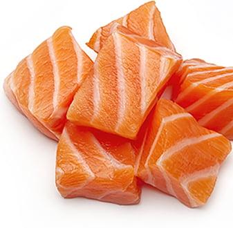 Свежая рыба в основе корма 1st Choice