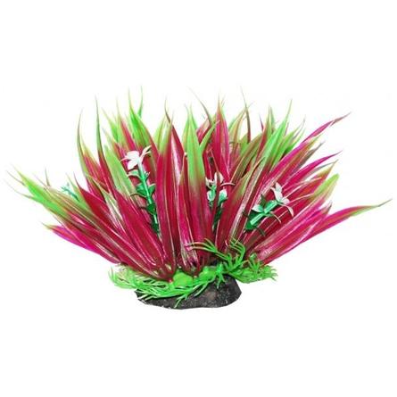УЮТ Растение аквариумное Осот зелено-фиолетовый фото