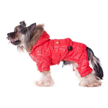 Купить DogModa Лыжник 1 Зимний комбинезон для собак, красный