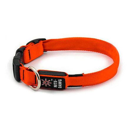 Купить Nite Ize Светящийся ошейник для собак, средний, 33 - 46 см, оранжевый, Niteize