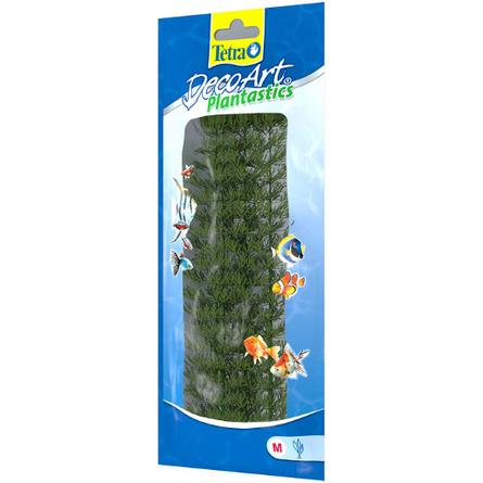 Tetra DecoArt Ambulia 2 (M) Растение аквариумное