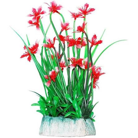 УЮТ Растение аквариумное Гемиантус с красными цветами, 24 см