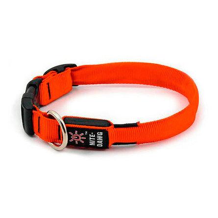 Купить Nite Ize Светящийся ошейник для собак, малый, 25 - 33 см, оранжевый, Niteize