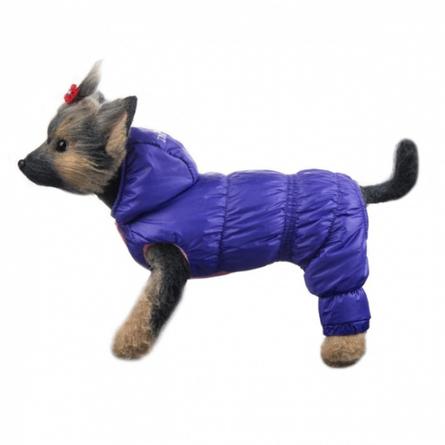 Купить DogModa Пуховик Комфорт для собак, длина спины 24 см, обхват шеи 25 см, обхват груди 39 см