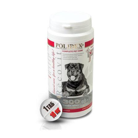 Polidex Recovit Кормовая добавка для собак после болезней, травм, операций, 300 таблеток фото