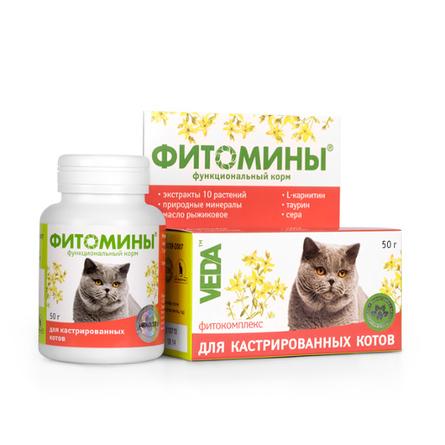 VEDA Фитомины Функциональный корм для кастрированных котов, 50 гр фото