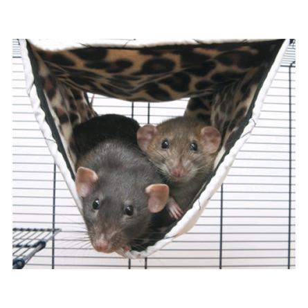 Купить Savic Гамак для хорьков и крыс