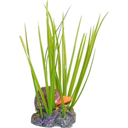 N1 Растение Улитка в осоте, 6,5х5,5х13 см