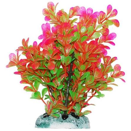 УЮТ Растение аквариумное Людвигия розово-зеленая, 20 см