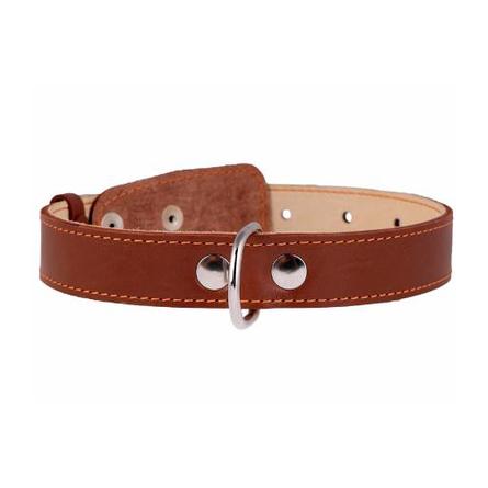 Купить Collar Ошейник для собак двойной, ширина 2, 5 см, длина 38-50 см, коричневый