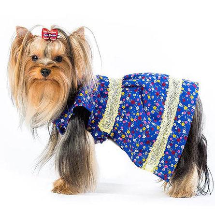 DogModa Кантри Платье для собак, девочка фото