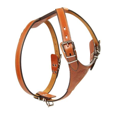 Dogger Шлейка для собак, ширина 2,5 см, объем 65-75 см фото