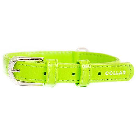 CoLLaR GLAMOUR Ошейник для собак без украшений, ширина 1 см, длина 19-25 см, зеленый фото