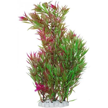 УЮТ Растение аквариумное Гетерантера зелено-фиолетовая, 44 см