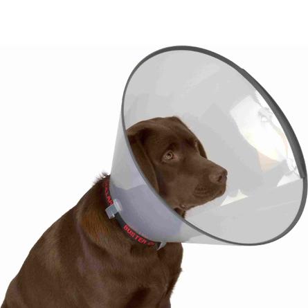 Kruuse Защитный воротник для собак