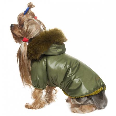 DogModa Winter 3 Куртка для собак, унисекс, зелёная  - купить со скидкой