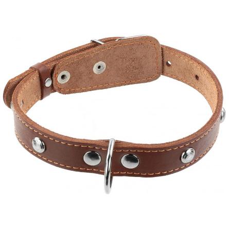 Купить Collar Ошейник для собак одинарный, с украшением, ширина 2, 5 см, длина 38-50 см, коричневый