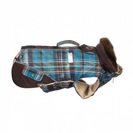 Купить DogModa Doggs Попона Такса теплая, длина спины 45 см, обхват шеи 38 см, обхват груди 54 см, мальчик