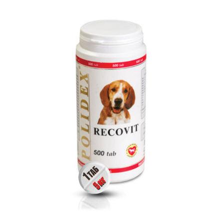 Купить Polidex Recovit Кормовая добавка для собак после болезней, травм, операций, 500 таблеток, Полидекс